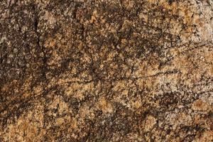steengeel - bruine kleur foto