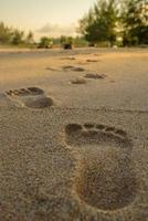 voetafdrukken op het strand foto