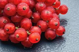 rode bessen bessen met waterdruppels op de donkergrijze achtergrond. foto
