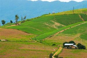 hoog uitzicht op rijstterrassen mae chaem, chiang mai, noord thailand foto