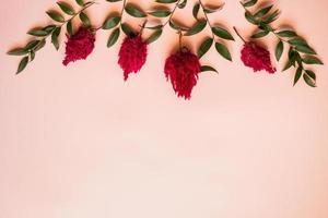 close-up een verse bloemen en een groene blaadjes liggen op een roze achtergrond - kopieer ruimte foto