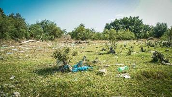 afval aan de rivier - afval aan de oevers van de rivier foto