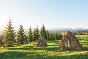 hooiberg op zonsondergang. weide, stuk grasland, vooral een hooiland. karpaten, oekraïne foto