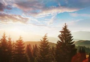 het herfst berglandschap met kleurrijk bos. dramatische ochtendscène. rode en gele herfstbladeren. locatie plaats karpaten, oekraïne, europa foto