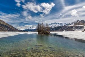 dooi in het meer van de zwitserse alpen. klein eilandje foto