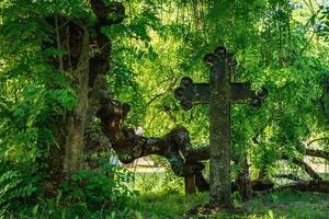 oud graf met een ijzeren kruis overwoekerd door vegetatie foto