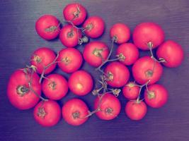 tomaat buiten in de tuin foto