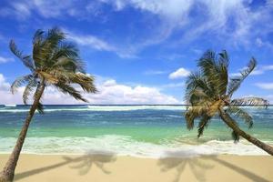 eiland pardise strand in hawaï foto