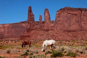 monument vallei landschap foto