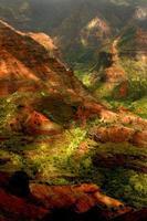 weelderig eiland kauai hawaii waimea canyon foto
