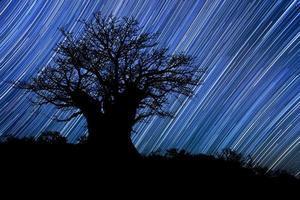 stersporen melkweg in de nachtelijke hemel van Zuid-Afrika foto