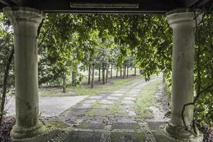 majestueuze pilaren in de schaduwrijke verzonken tuin, perdana botanische tuinen foto