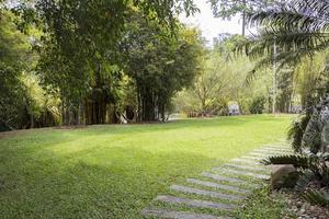 wandelpad naar het bamboe speelhuis, perdana botanische tuinen, maleisië foto