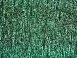 blauwgroen houtstructuur foto