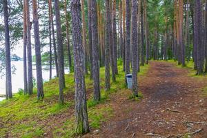 vesleoye eiland natuur in de stad fagernes fylke innlandet noorwegen. foto