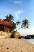 tropisch zandstrand foto
