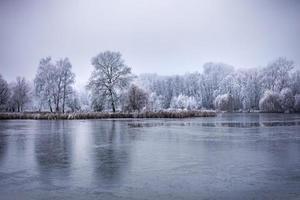 winterbos aan de rivier bij zonsondergang. panoramisch landschap met besneeuwde bomen, zon, prachtige bevroren rivier met reflectie in water. seizoensgebonden. winter bomen, meer en blauwe lucht. ijzige besneeuwde rivier. het weer foto