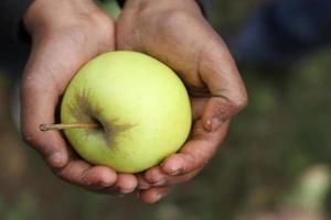 het geschenk van de appel foto