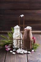 marshmallows en cacao