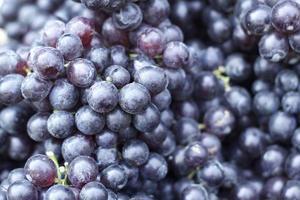 verse druiven foto
