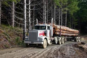 log vrachtwagen foto