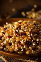 rauwe biologische multi gekleurde calico popcorn foto