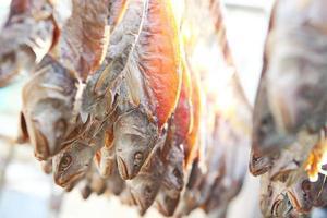 droge zoute vis foto