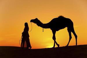 zonsondergang silhouet van kameel. foto