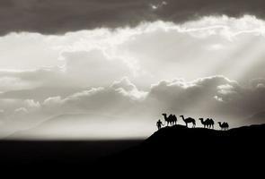 bw woestijn achtergrond foto