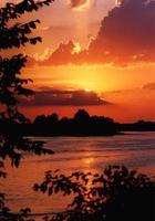 zomerse zonsondergang