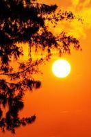 silhouet zonsondergang foto