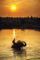 mahout clearing foto