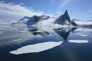 ijsbeer voetafdrukken in het poolijs foto