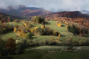 landschap herfst foto