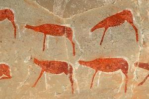 Bosjesmannen rock schilderij foto