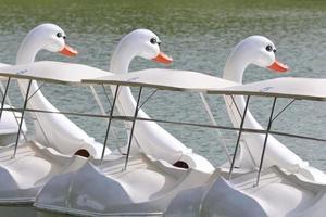 eend boot foto