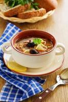 vlees solyanka- Russische keuken. foto