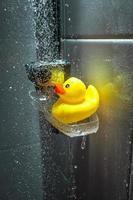 foto van gele badeend onder douche