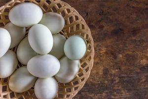groep eieren foto