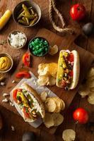 zelfgemaakte hotdog in chicago-stijl foto