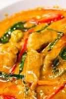 rode hartige curry met kip foto