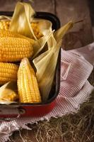 gekookte maïs foto