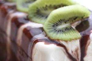 citrus-vanille-ijs gegarneerd met chocolade fudge saus
