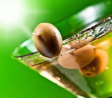 martini met groene olijven foto