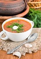 borsjt, soep van een biet en kool foto