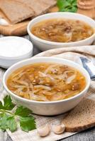 traditionele Russische koolsoep (shchi) met champignons