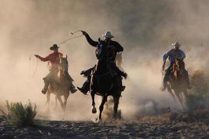 cowboys aan het werk foto