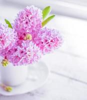 roze hyacinten in witte vaas op witte achtergrond foto