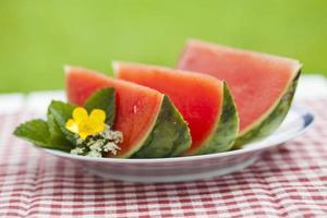 watermeloen foto