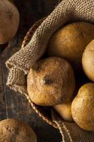 rauwe biologische bruine jicama foto